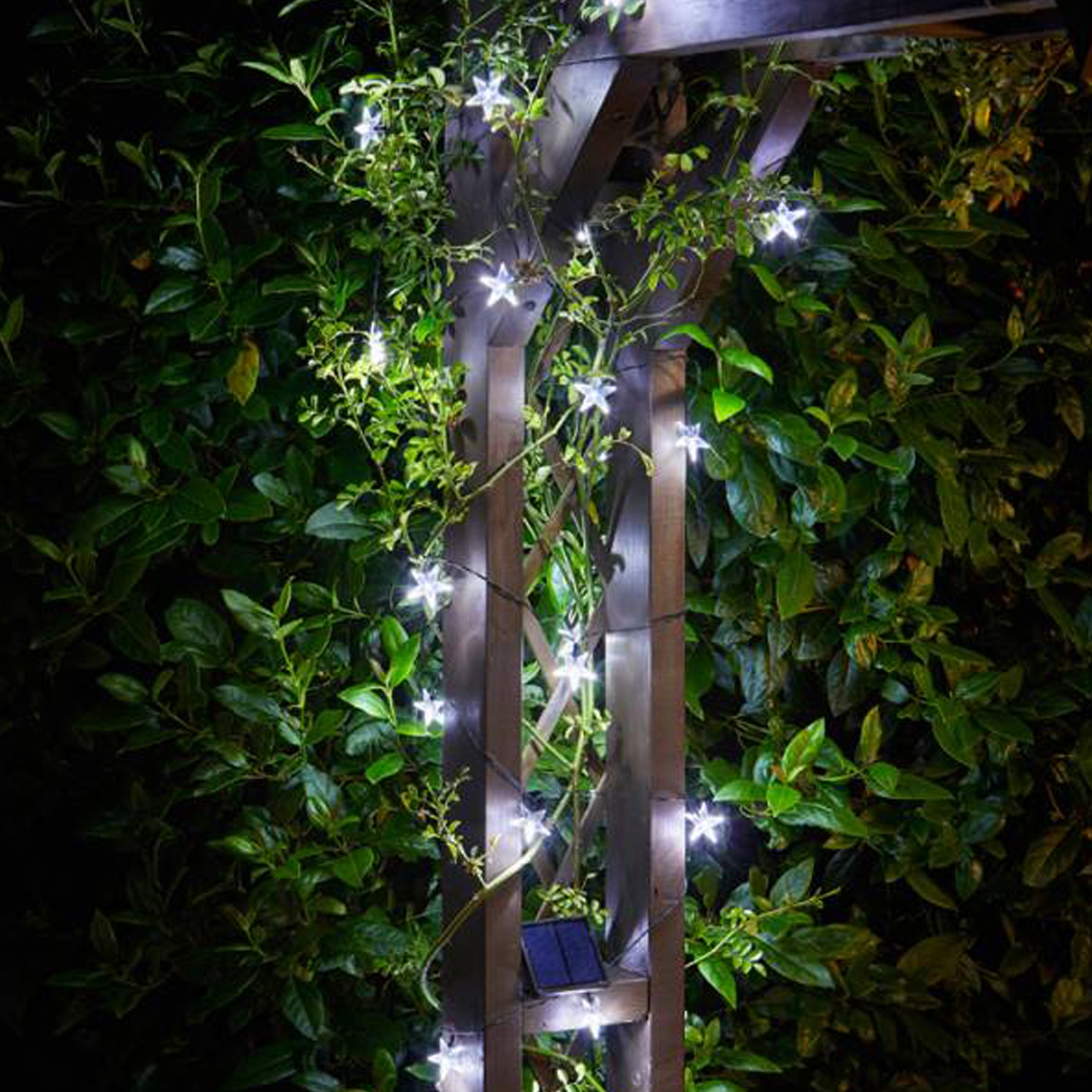 Click to view product details and reviews for Solar Powered 25 Star Fairy Lights.