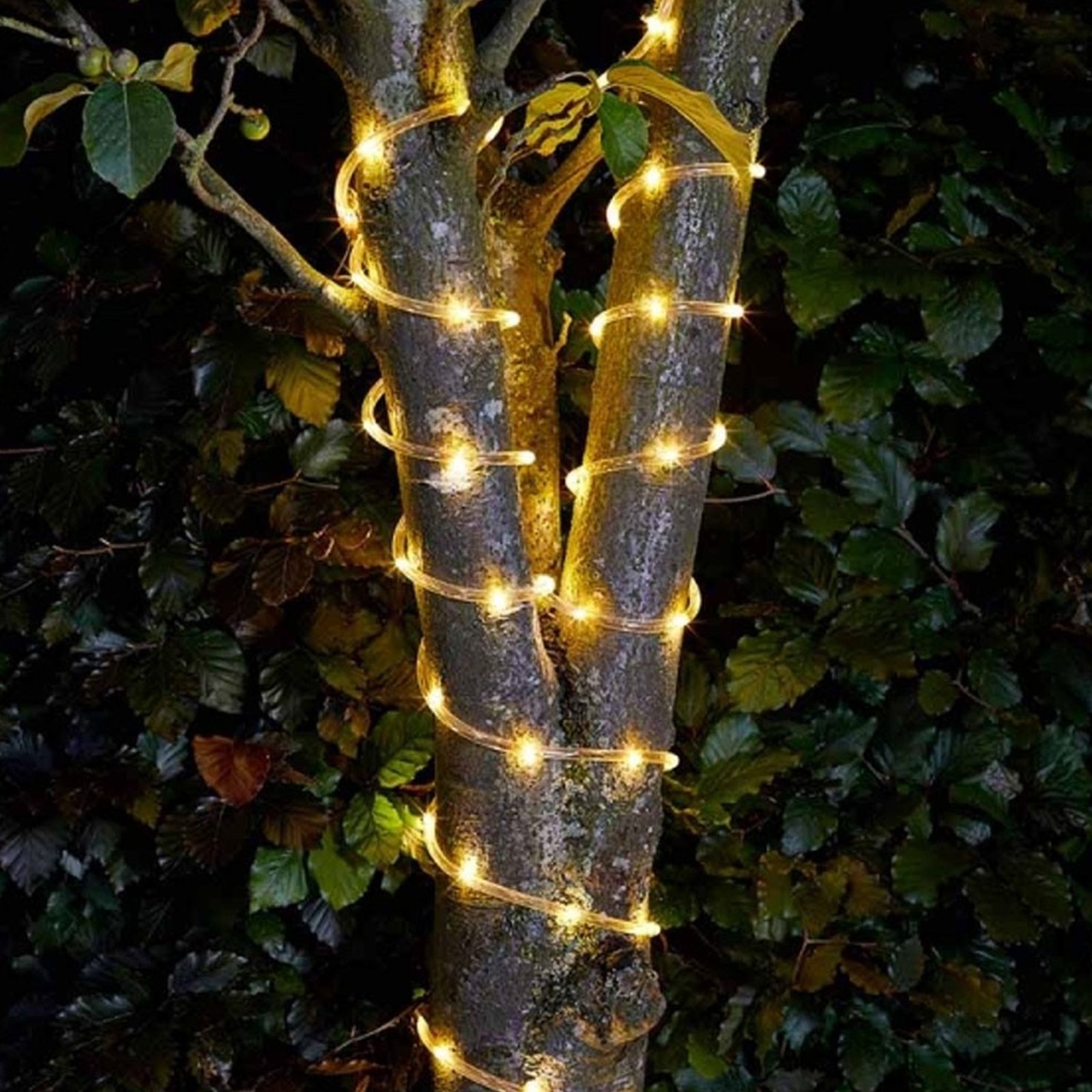 Click to view product details and reviews for Solar Rope Light 100 Led.