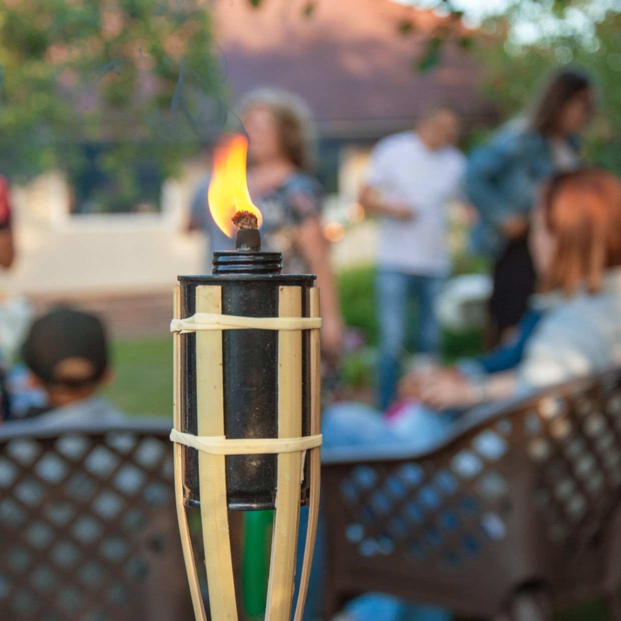 Click to view product details and reviews for Bamboo Torch 3 Pack.