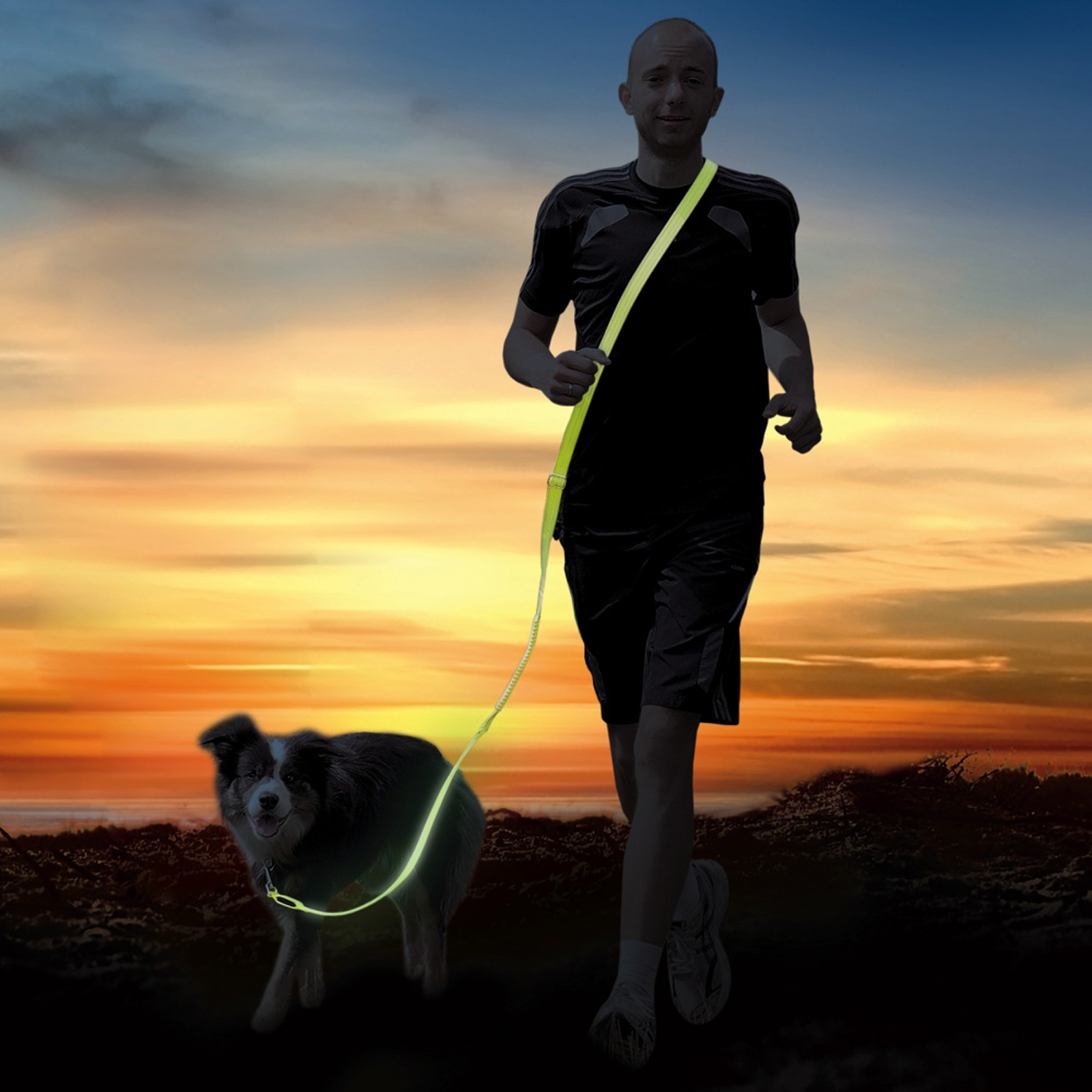 Click to view product details and reviews for Usb Dog Jog Lead.